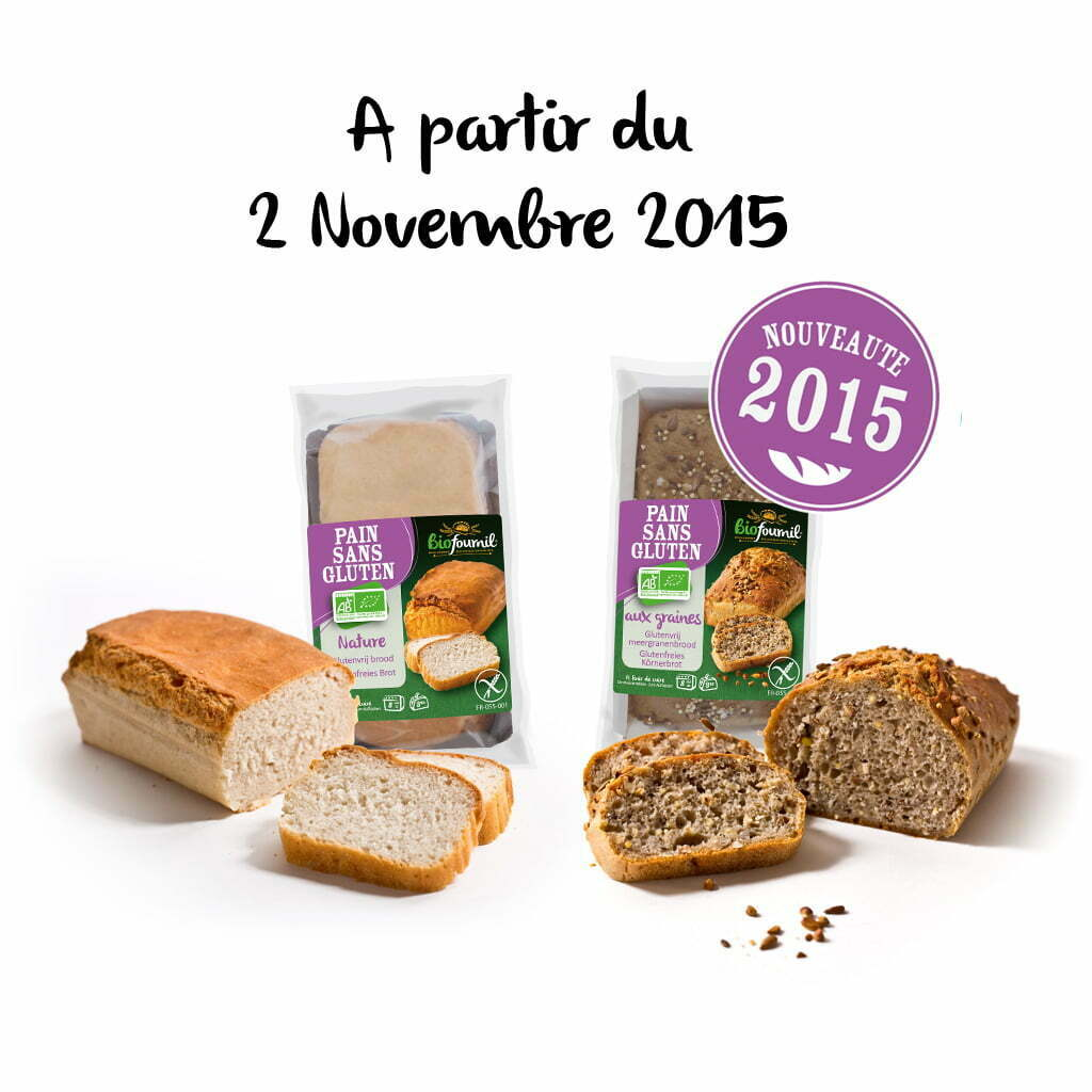 pain-sans-gluten-nature-graines